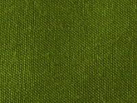 生地 50cm単位 カラーシーチング 無地 10000 [在庫共有品] 布 綿 (153(モスグリーン)) [並行輸入品]