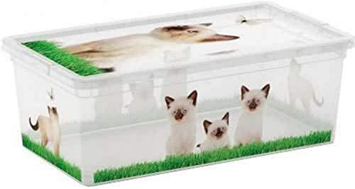 Kis C-Box Style Xs - 33,5X19X12H Puppy & Kitten