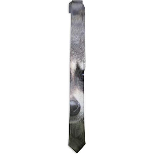 Paedto Corbatas para hombre corbata formal agradable para la piel corbata de mapache de seda novedad de moda accesorio para disfraz corbata S para hombres adolescentes niños