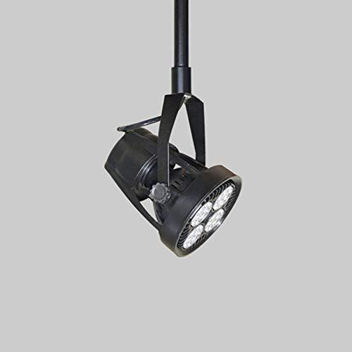 Plafondlamp, spot, spot, plafondspot, projectoren, gemonteerd op de oprijplaat, Par30, lange arm, LED-spots, voor kleding, tablets, hoge vloeren, muur, verlenging, spots