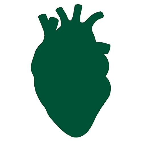 Anatomical Heart Silhouette Cardiologist Logo - Vinyl Decal for Outdoor Use on Cars, ATV, Boats, Windows and More - Forest Green 11 inch