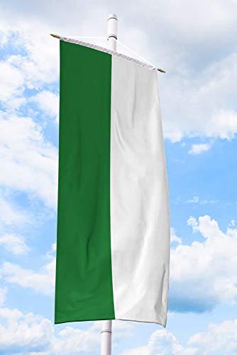 Deitert Schützenfahne grün weiß längsgestreift – 120x300 cm Bannerfahne für Schützenfest, Schützenflagge aus reißfestem Polyester, mit Doppelsicherheitsnaht gesäumt