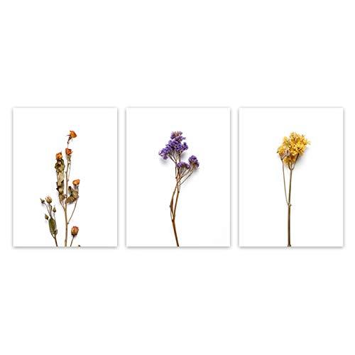 Pintura de Flores de Estilo nórdico Pintura de Lienzo Minimalista Blanco Cuadros de Arte de Pared Modernos para Sala de Estar Decoración de Dormitorio 11.8x15.7in (30x40cm) x3pcs SIN Marco