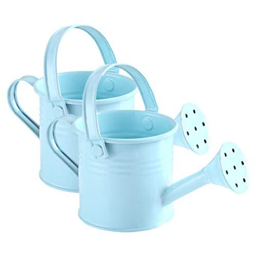 Hemoton - Regadera de metal, 2 unidades, sencilla para niños, cubo de riego de jardín de hierro, bidón de riego, hervidor, color azul cielo