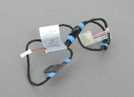 GTV INVESTMENT X5 E70 Türgriffbeleuchtung vorne rechts 63177184660 NEU