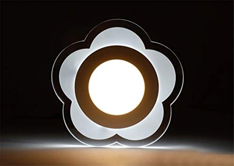 FuweiEncore Flur-Lauflichter Kreative minimalistische Blaumige Garderobentür auf dem Balkon Badzimmer LED-Deckenleuchte Ultraflache Lampe Unsichtbar (Farbe   -, Gre   -)