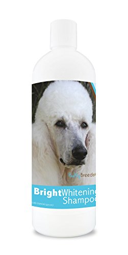 Healthy Breeds Bright Whitening Dog Shampoo For Poodle - For White, Lighter Fur – Over 150 Breeds...