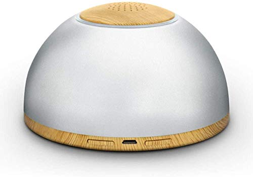 Huishoudelijke draagbare USB oplaadbare lucht desinfector Luchtreiniger in auto koelkast Voorkomt virussen gebruikt voor ondergoed Handdoek desinfectie