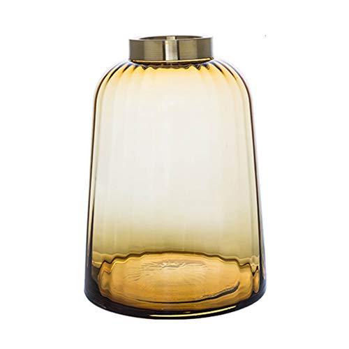 BYN 20,5 cm glas bloem vaas pot smalle mond eenvoudige kruik voor droge bloemen hydroponics plant, ornamenten voor woonkamer vensterbank huis accessoires,2 kleuren en maten optioneel grijs