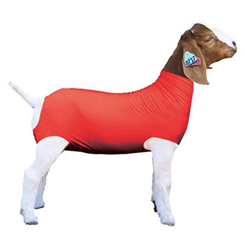 Show Pro Red Spandex Goat Tube for Show Goats - Show Livestock Supplies: Goat Covers & Blankets (Medium)