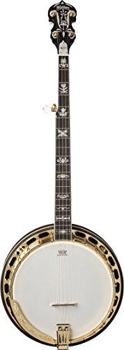 Washburn Americana Series B17K-D 5 String Banjo Sunburst