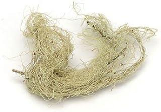 Usnea Lichen Whole Wildcrafted - Usnea barbata, 1 lb,(Starwest Botanicals)
