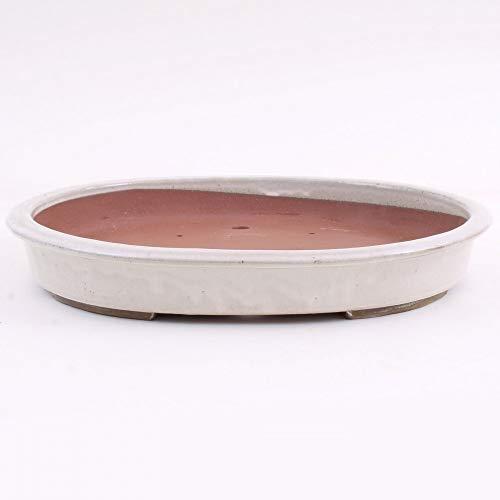 Bonsai 51110 Bol Ovale Crème 47 x 38 x 7 cm