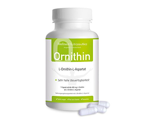 Wellnest L-Ornithin-L-Aspartat Kapseln (100% pflanzliche Qualität) 400 mg pro Kapsel ✓ 120 Kapseln ✓ bei Durchschlafproblemen ✓ Vegan Glutenfrei Laktosefrei