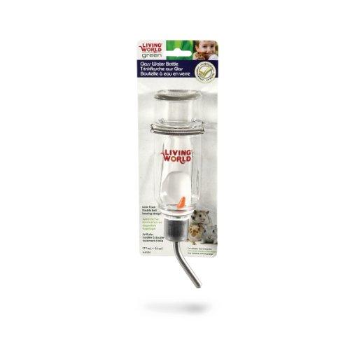 Living World Green auslaufsichere Trinkflasche aus Glas 177 ml, für Hamster, Mäuse und Rennmäuse