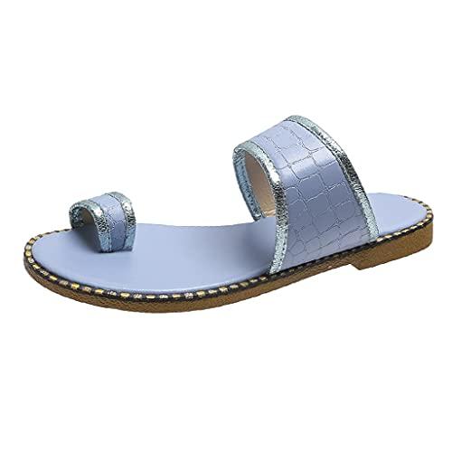LXDWJ Chanclas de verano para mujer Zapatos casuales de moda para mujer Zapatillas de color puro transpirables para exteriores Zapatos de mujer (Color : Blue, Size : 39)