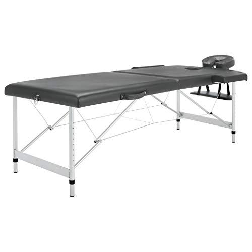 VidaXL Mesa Massagens C/ 2 Zonas Estrutura Alumínio 186x68cm Antracite