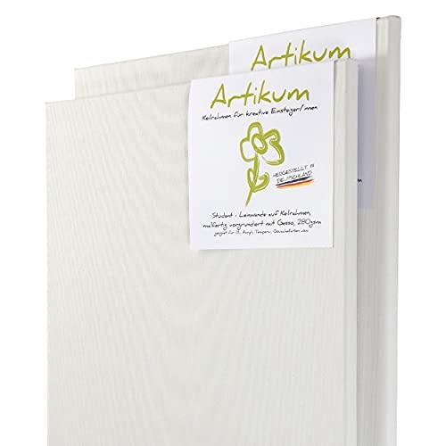 ARTIKUM 2X Student KEILRAHMEN 50x50cm | Leinwände auf Keilrahmen 50 x 50 cm | Leinwandtuch vorgrundiert, malfertige bespannte Keilrahmen mit Leinwand, quadratische Leinwände