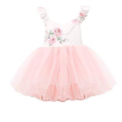 Flofallzique Special Occasion Girls Dress Pink Tutu Wedding Christening Birthday Baby Toddler Clothes