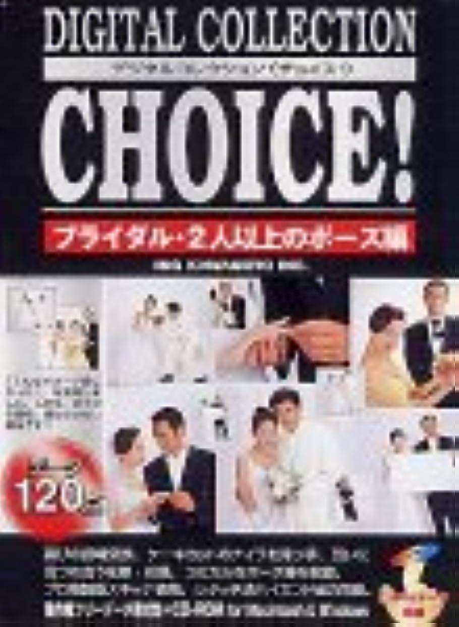 インシデント番号行Digital Collection Choice! No.27 ブライダル?2人以上のポーズ編