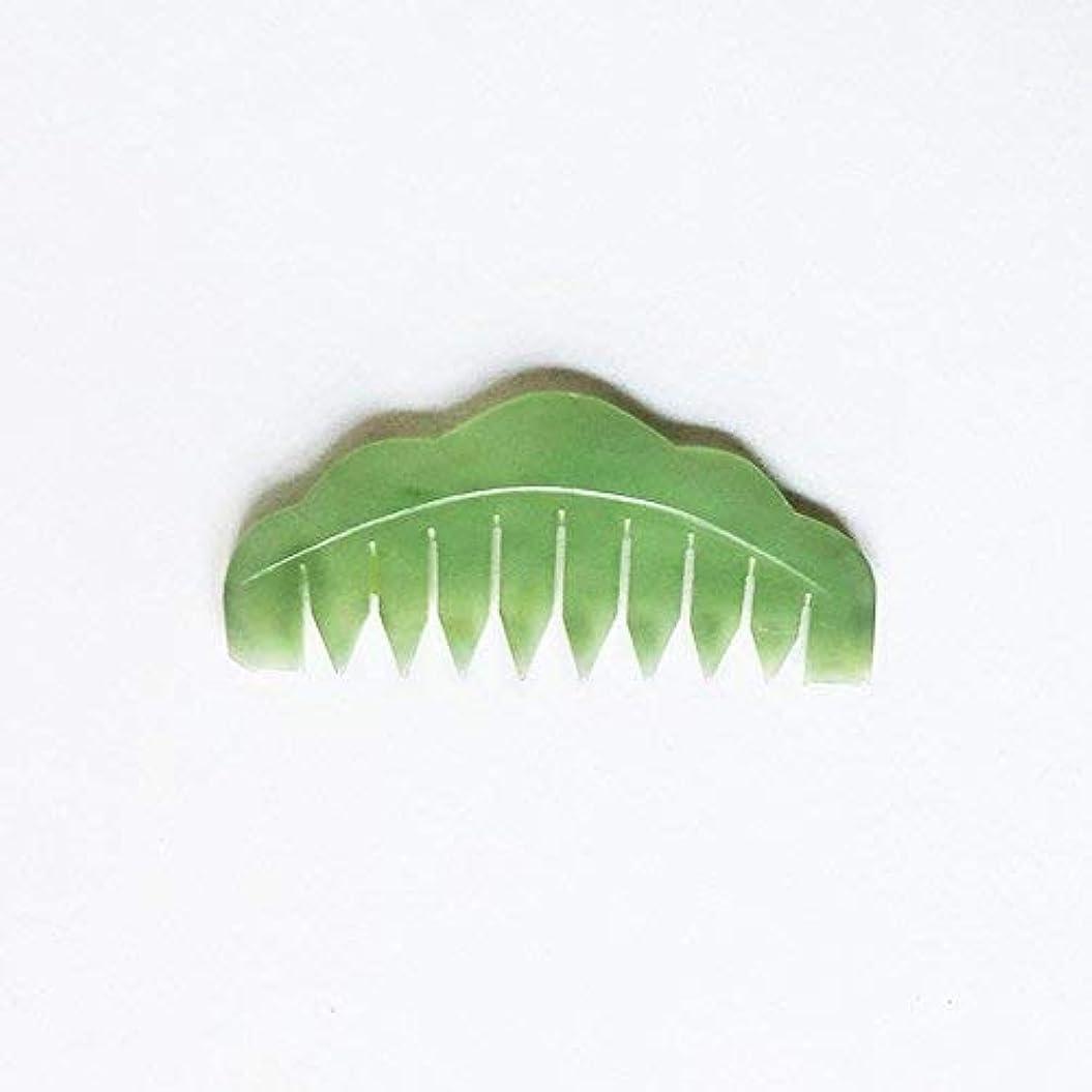 ラッチ磁石サラミJade Chi Comb For Head Massage Therapy [並行輸入品]