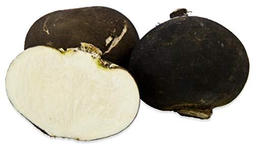 Black Spanish Round Radish - 100 Seeds