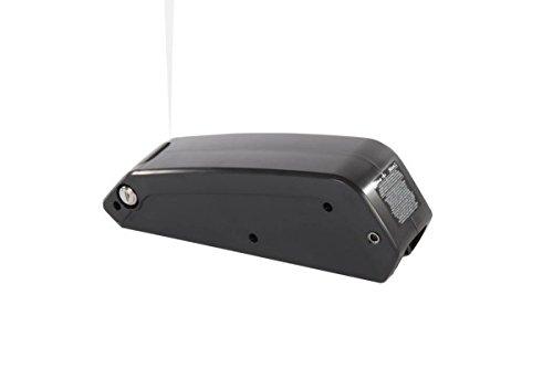 AKKU Bionx BATTERIE 48V/6.3AH/303WH/250W 01-4350 rr-wavedcw inc.ref bionx