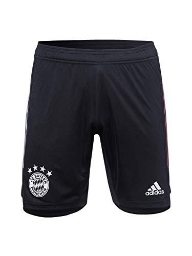 adidas Herren 20/21 FC Bayern Training Short Trainingsshort, Black/Fcbtru, XL
