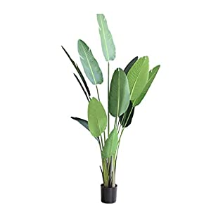 YINGZI Artificial Plant 59 Inch Fake Banana Tree with 10 Leaves Lifelike Green Faux Plant for Indoor Outdoor Feaux Plants in Pot (Size : 69cm)