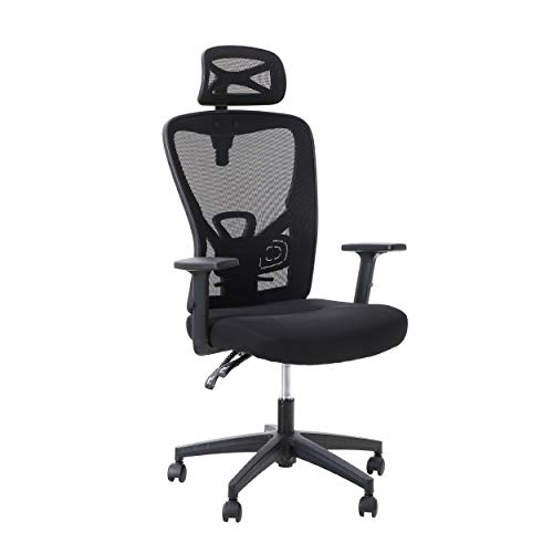 ALPHA HOME Office Chair Ergonomic Home Desk Chair High Back Mesh Task Chair with Lumbar Support Executive Stool with Adjustable Headrest & Armrest Rolling Swivel Desk Chair for Women-Capacity 250LBS