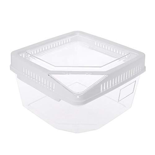 Kunststoff-Behälter für Reptilien Futterbox Spider Skorpion Insekten Terrarium Zuchtbox weiß