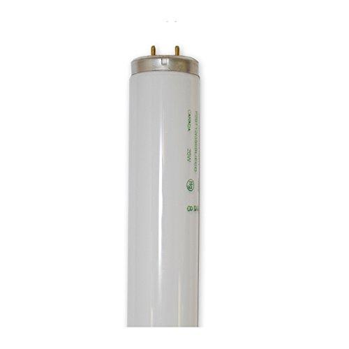OSRAM SYLVANIA F20T12/350BL (22113) 20W G13 / MEDIUM BI PIN T12 Fluorescent