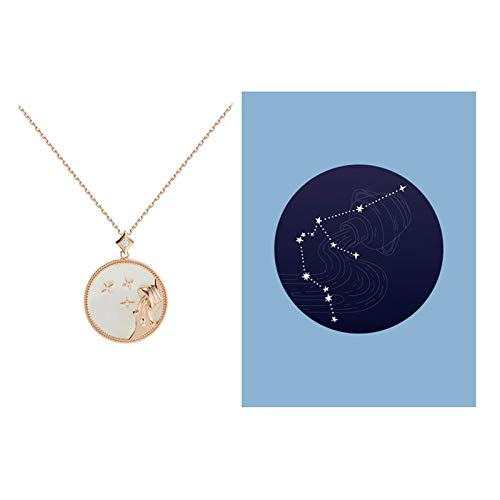 JJH Constellation Coin Necklace, 925 Sterling Silver and Shell, for Wife Husband Mother Friends, 44.1 cm / 17.5' Chain (Color : Aquarius (1.20-2.18))