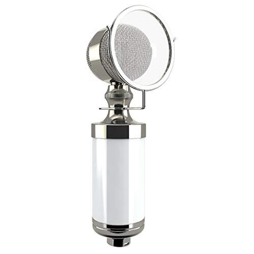 Xxw flesje, condensatormicrofoon, netwerkopname, karaoke, computer, shouting wheat, live broadcastapparatuur