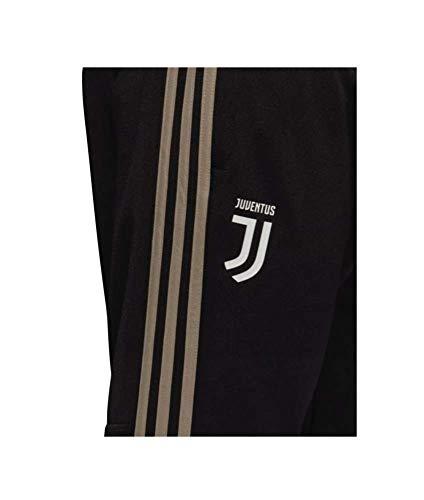 adidas Herren Juve Training Hose, Black/Clay, XL
