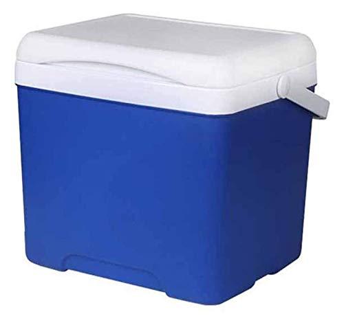 SHUHANG Refrigerador de Coches 5L Coche Portátil Refrigeradores de Hielo Camping Cooler Refrigerador Incubadora de Coches Regla de Pescado para Pescar (Color : Blue, Size : 20.5x19.5x27cm)