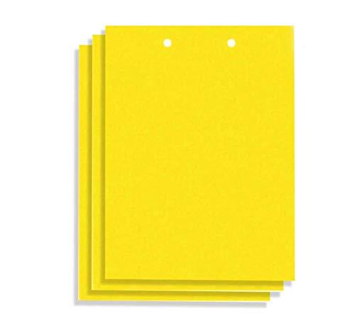 zyh Paquete de 20 Pegatinas Amarillas para trampas de Moscas de Frutas para Plantas al Aire Libre,trampas para Moscas de Insectos pegajosas