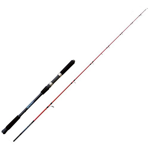 NOMURA Stick Pencil Special SW 2.70 m 40-55 lbs-120 g Canna da Pesca a Spinning Ideale per Tutti i Pesci Predatori Sia in Mare Che Fiume e Lago