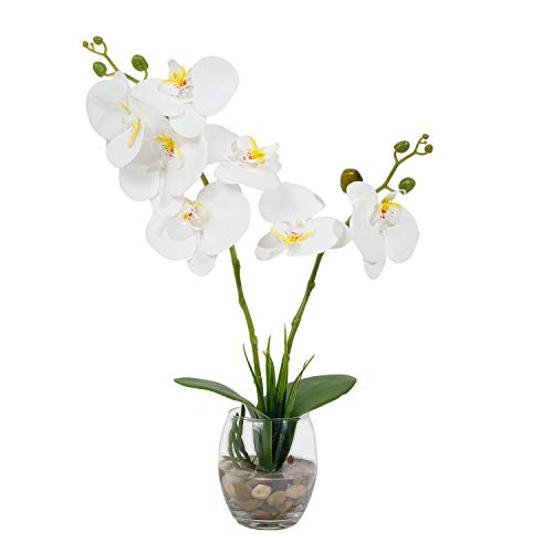 RENATUHOM Faux Orchid Plant White Flowers with Glass Vase Phalaenopsis Orchid Artificial Flowers Silk Orchid Decorations for Home Office Kitchen Wedding Party Table Centerpiece