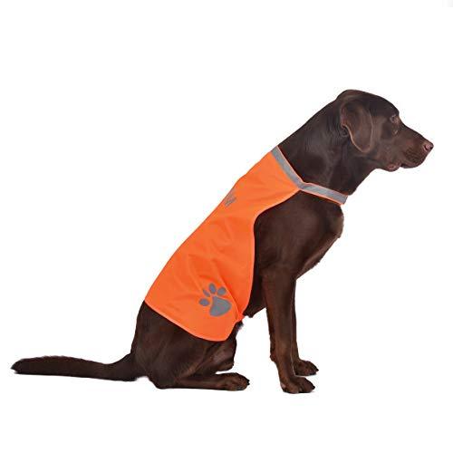 Hunde Sicherheitsweste (7Größen) - Hohe Sichtbarkeit für Outdoor Aktivitäten Tag und Nacht, Hält den Hund Sichtbar, Sicher vor Autos & Jagtunfällen | Blaze Orange (40, Orange)