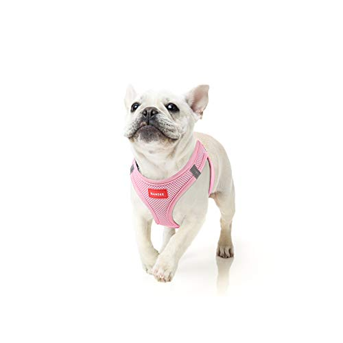 Most Comfortable Dog Harnesses