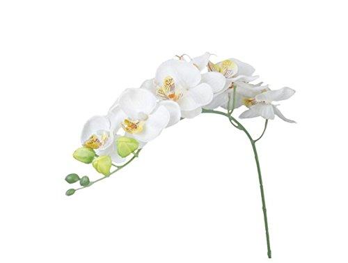 Wiwi.f Künstliche Blumen Schmetterling Orchidee Home Bouquet Dekoration, weiß, same