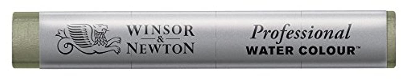 Winsor & Newton Professional Water Colour Stick, Davy's Grey
