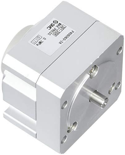 SMC P406060–2A di unità rotante