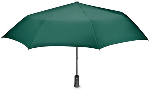 Umbrella with Flashlight Handle and Auto Open and Close Feature (hunter green)