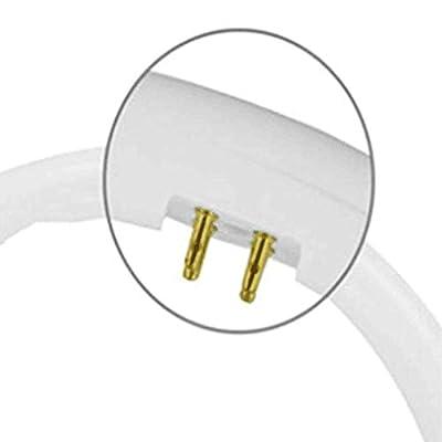 22W 32W 40W 55W Circular LED Tube T5 Round Tube Light Circle Ring lamp (White Light, 40W)