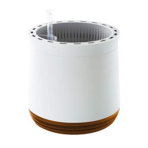 Airy Pot - innovadora Maceta purificadora de Aire 100% eficaz - Purificador de Aire Natural con Plantas de Interior sin Electricidad ni químicos (Honey Mustard)
