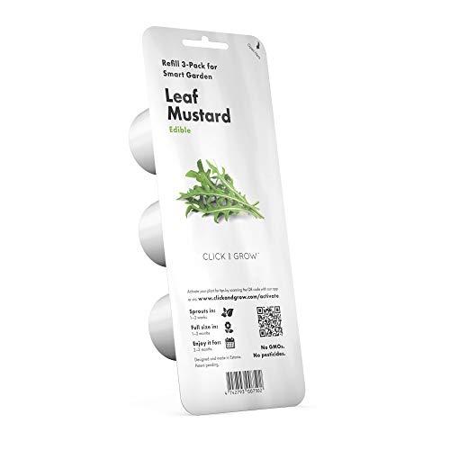 Emsa 3 Cápsulas Rúcula Click & Grow, Semillas apta para Smart Garden, huerto urbano, tierra inteligente, jardín hidropónico, resultados en 40 días, Sistema automático iluminación LED