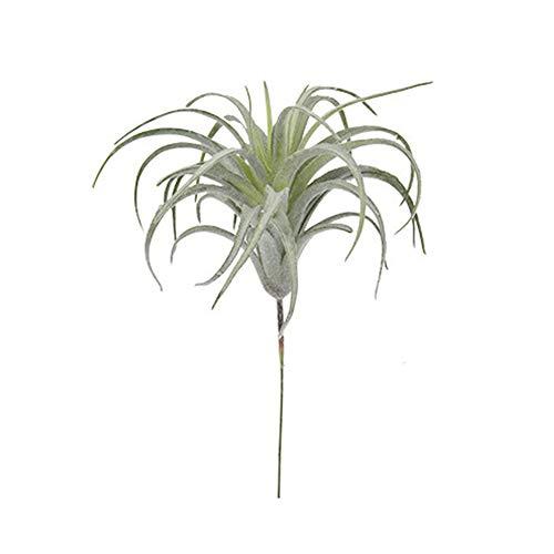 Vi.yo Kunstpflanze Künstliche Pflanzene Bromelie Gras Simulation Air Grass Home Hochzeit Blumen Wand Pflanze 16cm*20cm