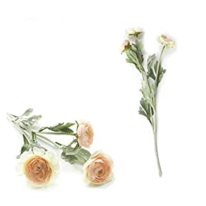 YSDSPTG Artificial Flowers English Artificial Roses Ranunculus Asiaticus, Silk Flowers for Wedding Table Decoration, (Couleur : Champagne)